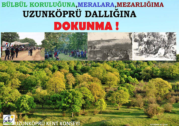 dallik3