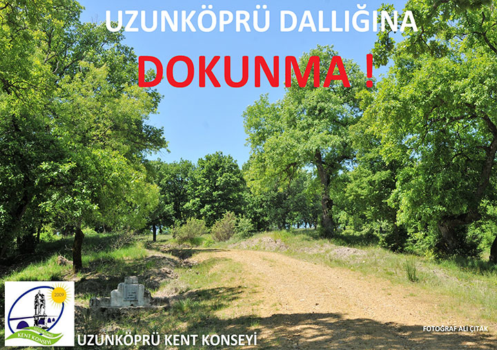 dallik4